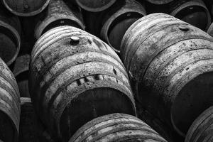 Wine Barrels in Black and White by kiko jimenez