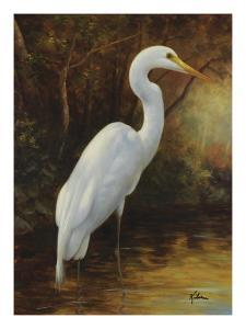Evening Egret by Kilian