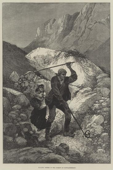 Killing Vipers in the Forest of Fontainebleau-Charles Auguste Loye-Giclee Print