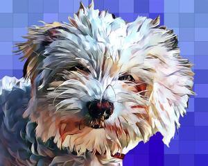 Pop Dog V by Kim Curinga