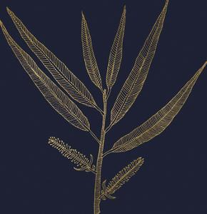 Burnished Gold - Willow by Kim Johnson