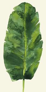 Tropical Palm Leaf III by Kim Johnson