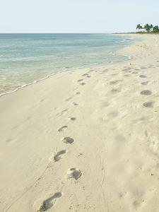 Footprints in Sand at Grace Bay Beach, Providenciales, Turks and Caicos Islands, West Indies by Kim Walker