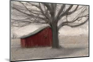 Barnyard Star by Kimberly Allen