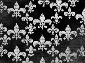 Black and White Fleur by Kimberly Allen