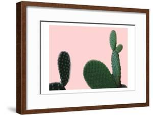 Blush Cactus 2 v2 by Kimberly Allen