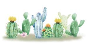 Cactus Dreaming by Kimberly Allen