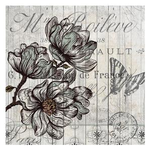 Country Magnolia 2 by Kimberly Allen
