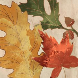Fall Leaves Square 1 by Kimberly Allen