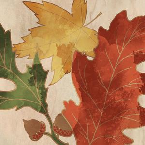 Fall Leaves Square 2 by Kimberly Allen