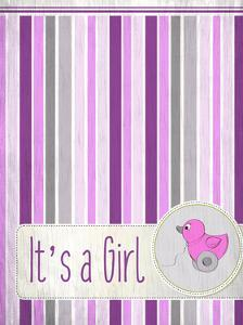 Its a Girl by Kimberly Allen