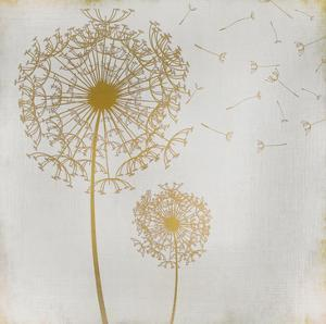 Make a Wish 1 by Kimberly Allen