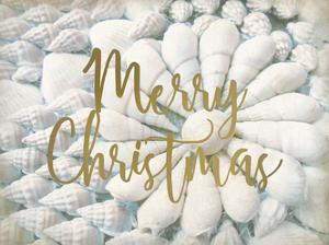 Merry Christmas Shells by Kimberly Allen