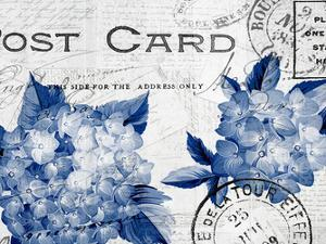 Postcard Hydrangea 3 by Kimberly Allen