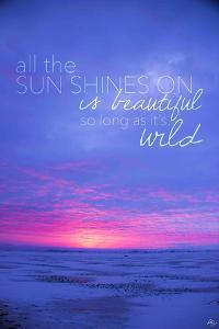 All the Sun Shines On by Kimberly Glover