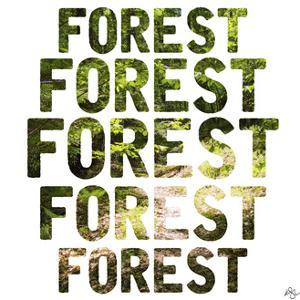 Forest Repeat by Kimberly Glover