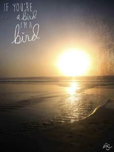 I'm a Bird by Kimberly Glover