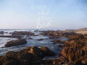 If You're a Bird 1 by Kimberly Glover