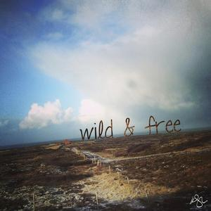 Wild and Free 2 by Kimberly Glover
