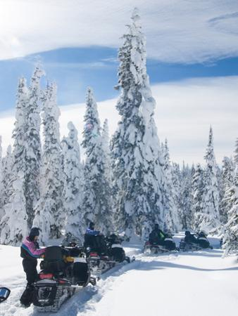 Snowmobilers in a Hoar Frosted Forest on Two Top Mountain, West Yellowstone, Montana, United States by Kimberly Walker