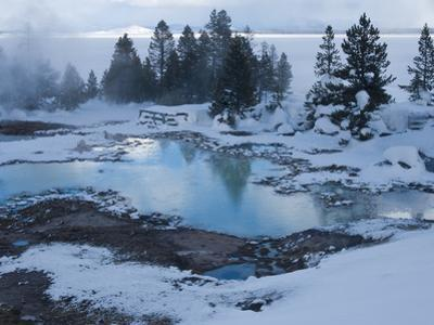 West Thumb Basin Winter Landscape, Yellowstone National Park, UNESCO World Heritage Site, Wyoming,