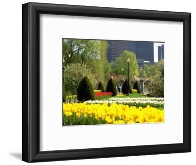 Public Gardens, Boston, MA