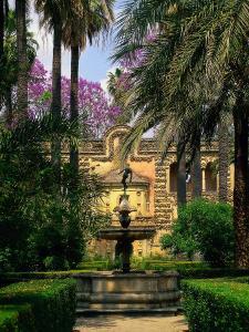 Reales Alcazares, Santa Cruz, Seville, Spain by Kindra Clineff