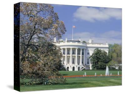 The White House in Spring, Washington DC