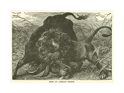https://imgc.artprintimages.com/img/print/king-of-african-beasts_u-l-pvnypn0.jpg?p=0