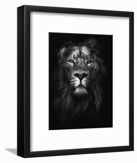 King of Kings-Design Fabrikken-Framed Photographic Print
