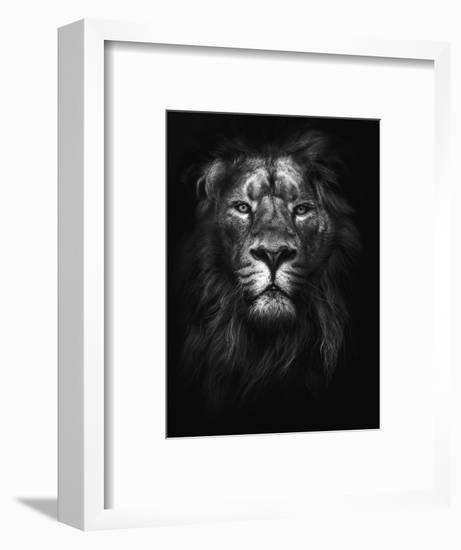 King of Kings-Design Fabrikken-Framed Photographic Print