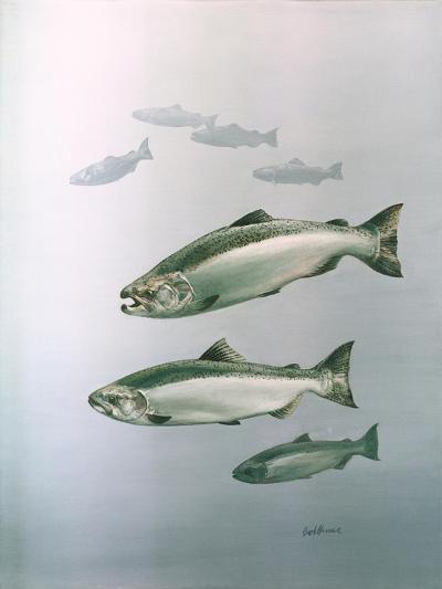 King Salmon--Giclee Print