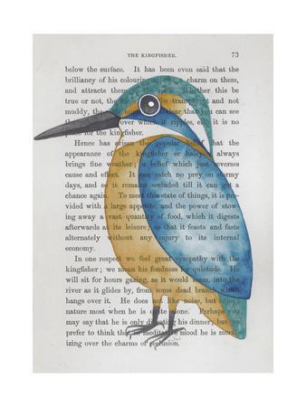 https://imgc.artprintimages.com/img/print/kingfisher_u-l-psfi990.jpg?artPerspective=n