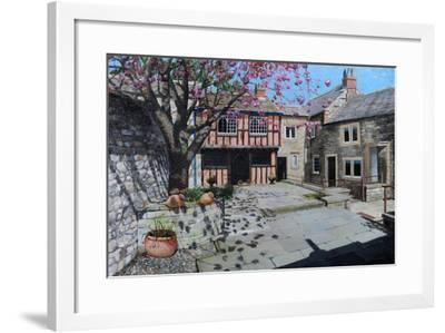 Kings Court, Bakewell, Derbyshire, 2009-Trevor Neal-Framed Giclee Print
