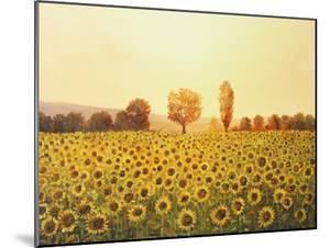 Memories Of The Summer by kirilstanchev