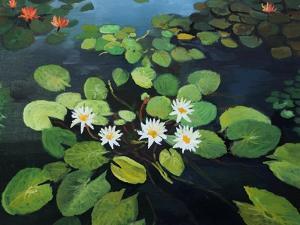 Water Lilies by kirilstanchev
