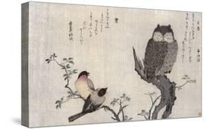 Owl and Two Eastern Bullfinches, Birds Compared in Humorous Songs, c.1791 by Kitagawa Utamaro