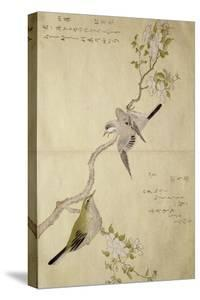 P.332-1946 Vol.1 F.2 Tit on a Bough on the Right and a Bush-Warbler on a Branch on the Left, from… by Kitagawa Utamaro