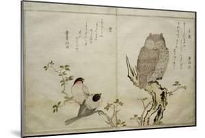 P.332-1946 Vol.2 F.4 an Owl and Two Eastern Bullfinches, from an Album 'Birds Compared in… by Kitagawa Utamaro