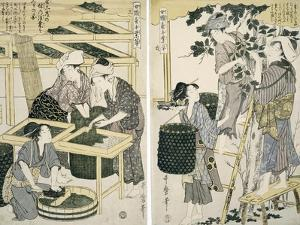 Silk-Worm Culture by Women by Kitagawa Utamaro