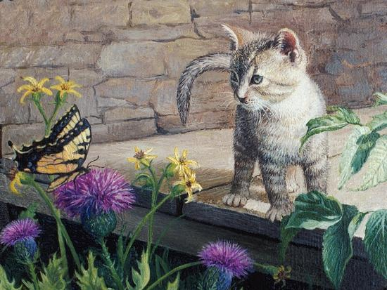 Kitten and Butterfly-Kevin Dodds-Giclee Print