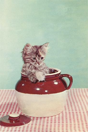Kitten in a Jug--Art Print