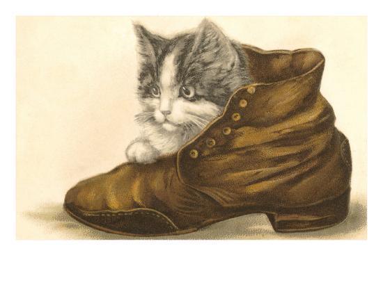 Kitten in Shoe--Art Print
