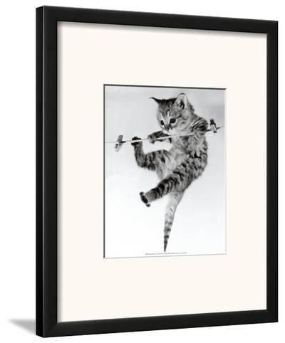 Kitten on a Clothes Line-Erik Parbst-Framed Art Print
