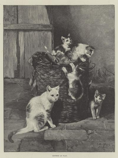 Kittens at Play--Giclee Print