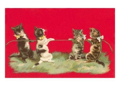 Kittens Playing Tug of War--Art Print