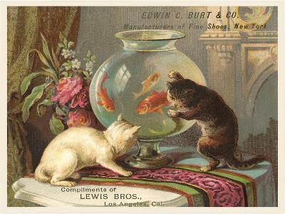 Kittens Watching Fish in Bowl--Art Print