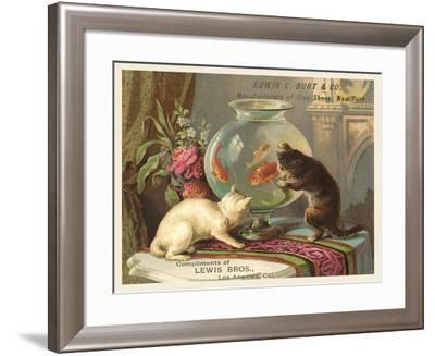 Kittens Watching Fish in Bowl--Framed Art Print