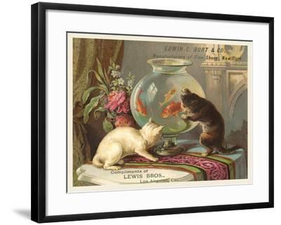 Kittens Watching Fish in Bowl--Framed Art Print