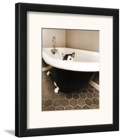 Kitty III-Jim Dratfield-Framed Art Print